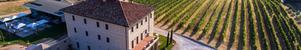 cincinnato cantina vigne Nero Buono