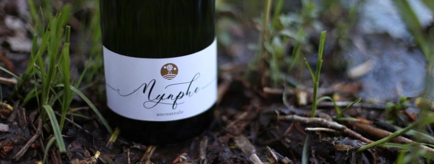 nynphe detail spumante sparkling wine