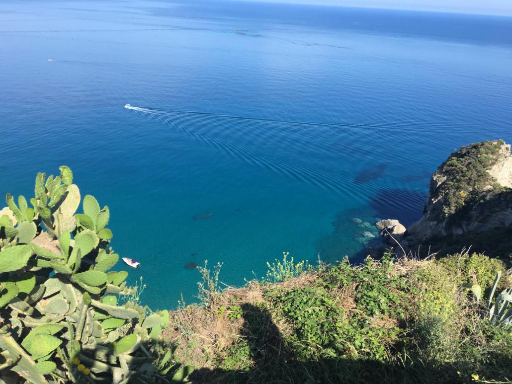 isola mediterraneo flora mediterranea con mare e fichi d'india su una roccia e faro della guardia di ponza